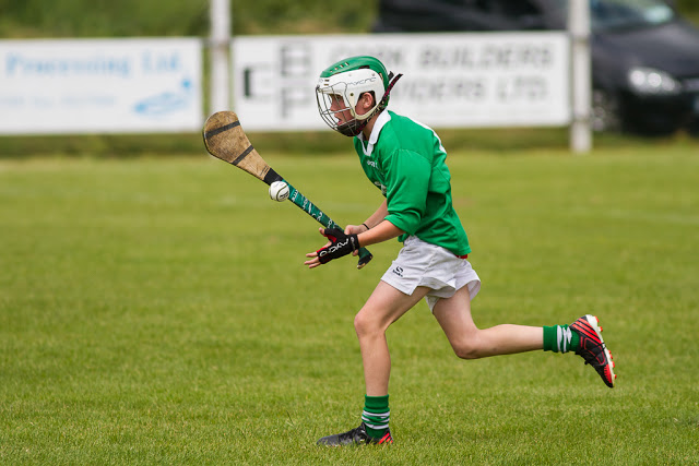 Shamrocks u12 hurling