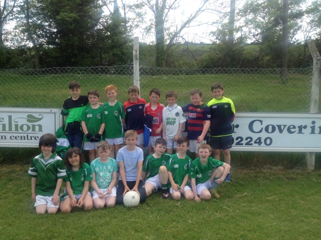 Shamrocks U10 Football Panel who took part in the blitz in Balygarvan on 28/5/16
