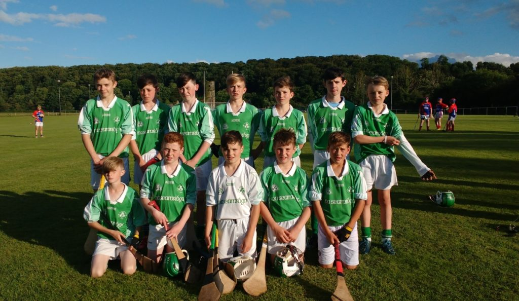 U14 Panel away to Lee Gaels, 29/6/16. Back row, l to r: Mark Sisk, Philip Dorney, Cian O'Flaherty, Seán Andrews, Harry Andrews, Adam McSweeney, Derry Howard. Front, l tor: Adam Maye, Fionn Herlihy, Michael Foy, Eoin O'Flynn, Tim Sheehan.