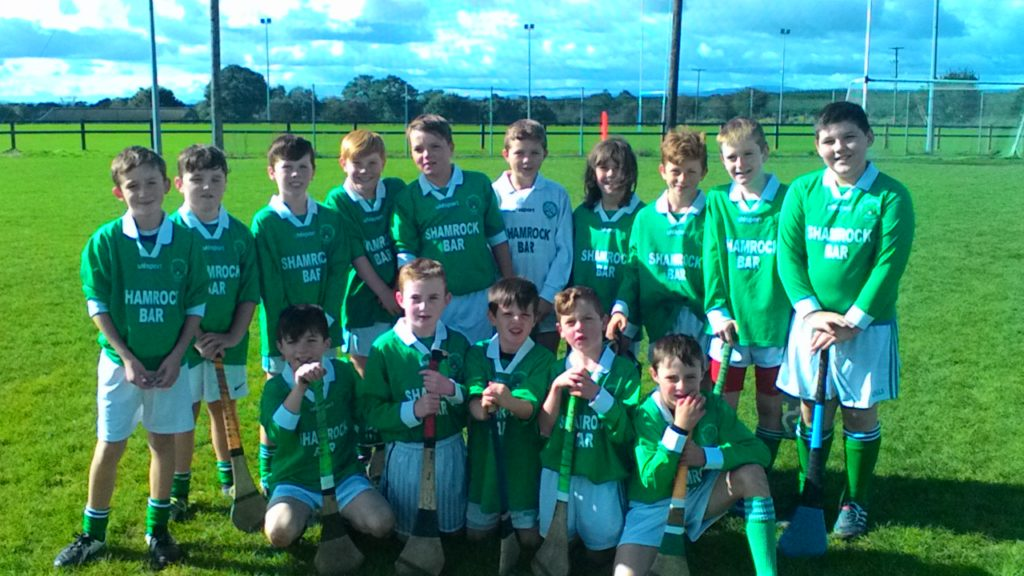 The U10 Hurling Panel in Whitechurch, 1/10/16